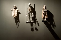 Skeleton Puppets, USA / Death @ Wellcome Collection